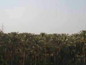 Pht_egypt512
